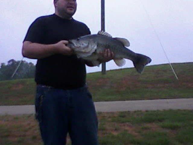 12lb. 10oz. Hollis Lathem Res. lake record
