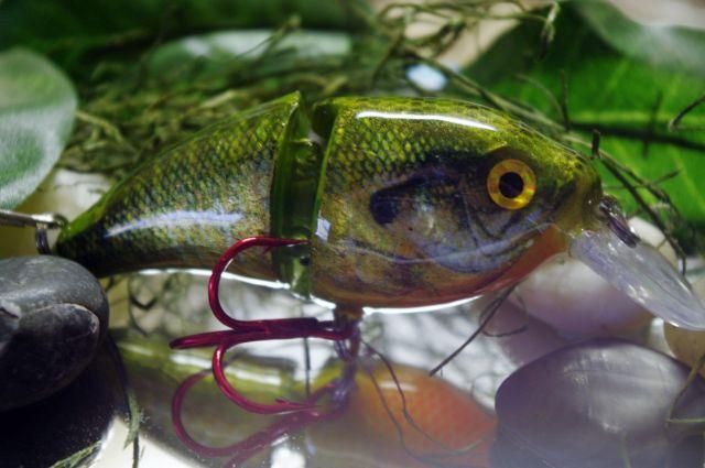 Foiled Bluegill.JPG