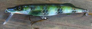 Pike minnow
