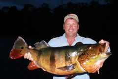 28lb World Record Peacock, caught by Bill G.-