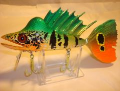 Replica Lure of IGFA World Record Peacock Bass