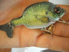 another small bluegill