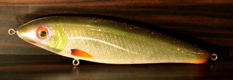 """6"""" Bait fish"""