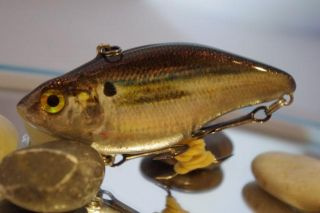 Foiled Tater Hills Threadfin Shad