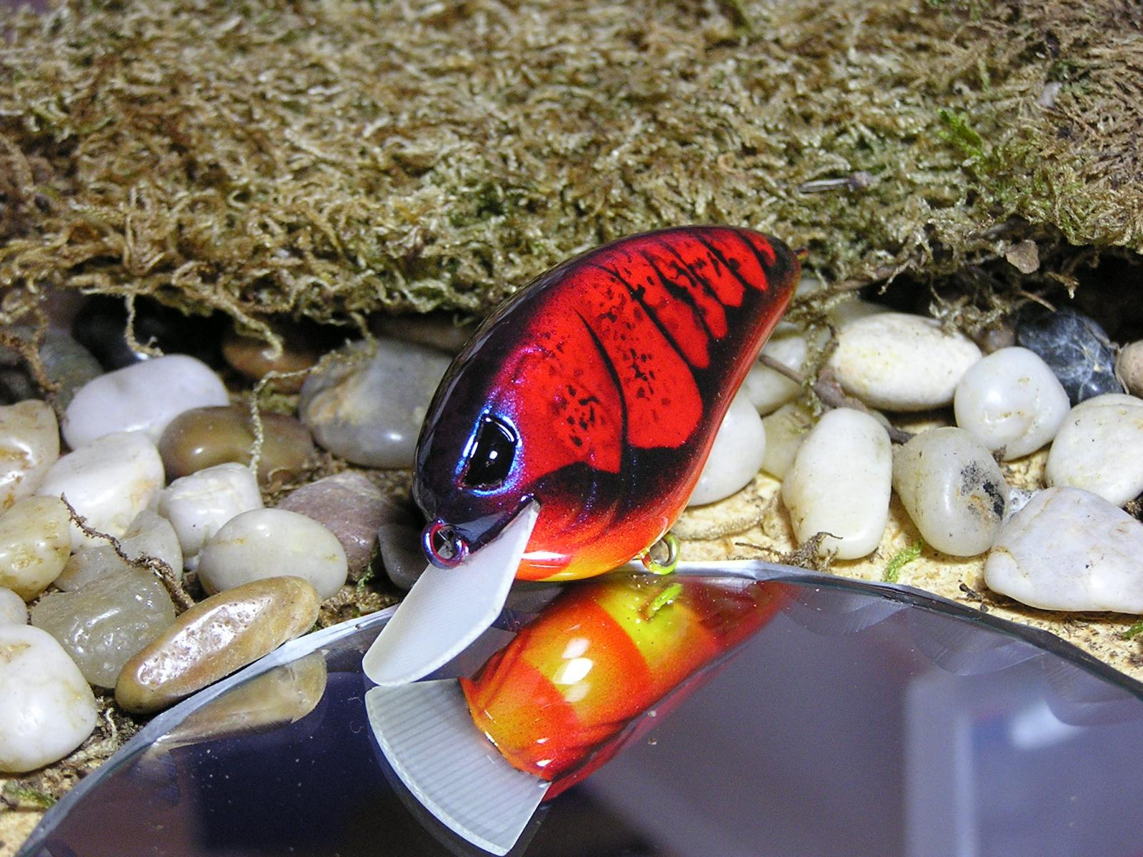Royal red craw