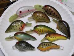 plate full of baits