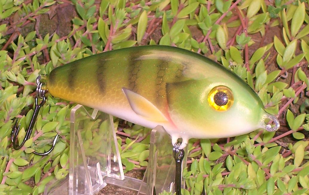 Salmo Fatso repaint in Perch