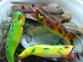 Frog Splashers