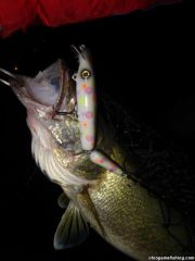 Lake Erie Walleye Night Fishing