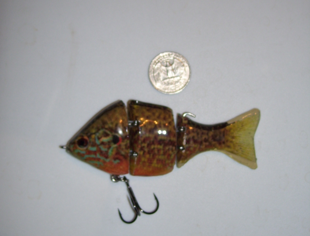 Sunfish swimbaits