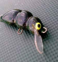 2,5 cm BUG , floating , designed for chubs