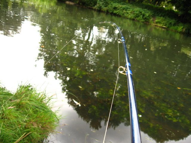 jerk bait rod