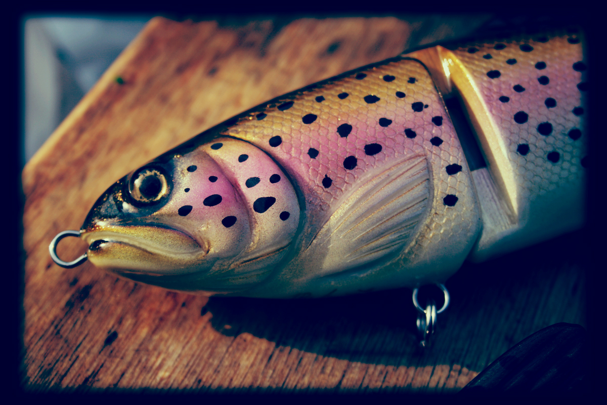 Lucky Trout 2