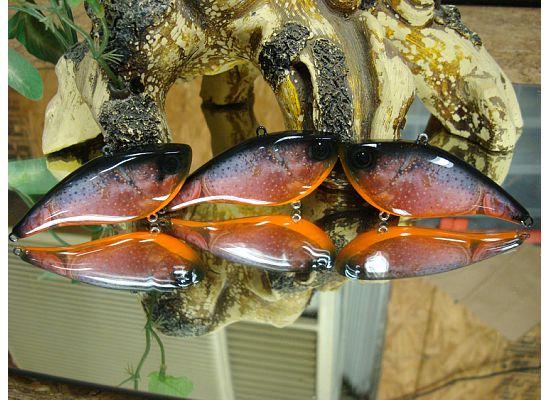 Foto Crawfish