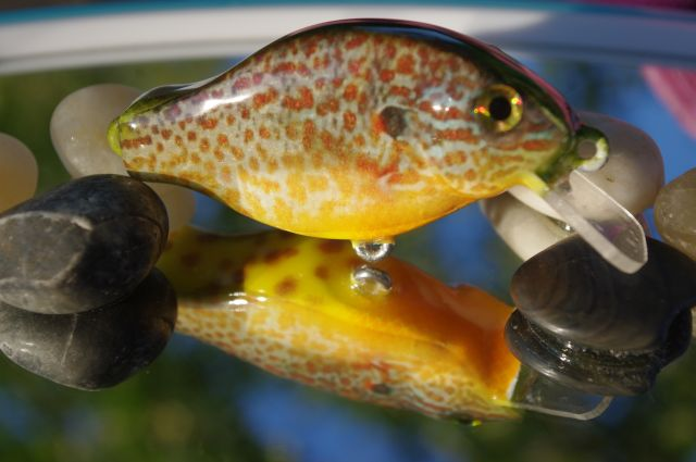 4th Bait Carved-- Foiled Photofinish Pumkinseed