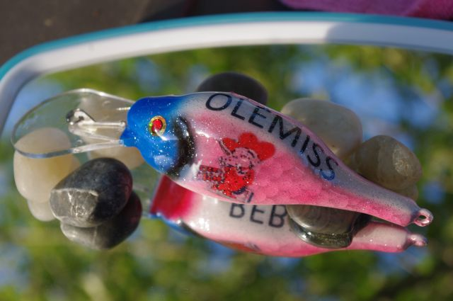6th Carved Bait--Olemiss Keepsake Bait For My Daughter