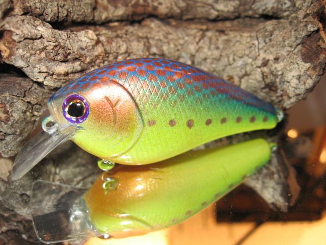 Copper Sunfish