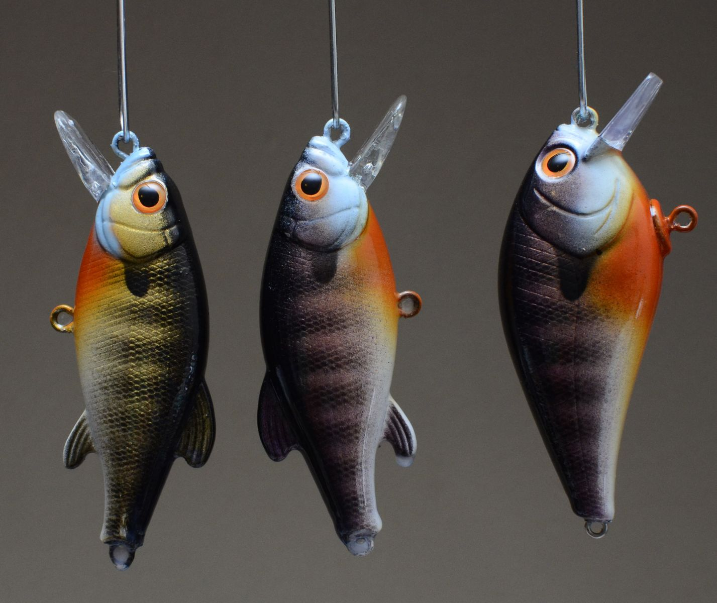 New bluegill colors