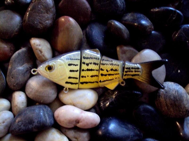 barfish