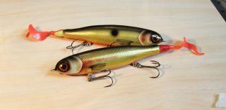 plastic tail baits
