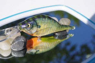 5th Carved Bait--Foiled Photofinish Bluegill