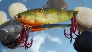 Foiled Photofinished Yellow Perch On A Spoon