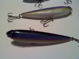 blue shad Top And bottom