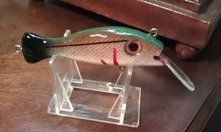 Wooden Juve Snook Green/Brown