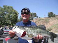 lagoon 6 12 11  8.37 popper fish