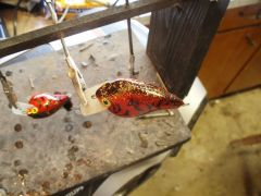 spankin crank square bill in patoka red copper craw