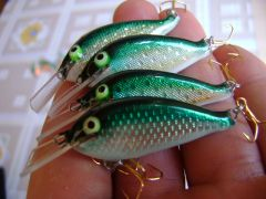 extreme flat lures