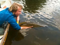 Jp 122cm northern pike release1