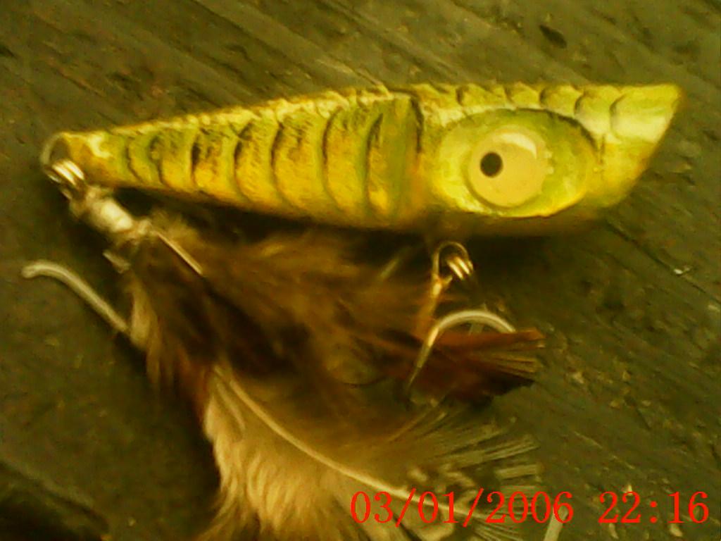 topwater bass popper