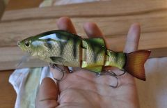 gold leafed perch