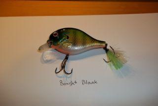 193 0167 bluegill purchased blank