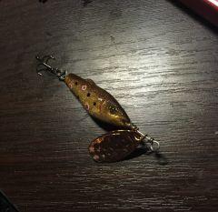 Fish spinner
