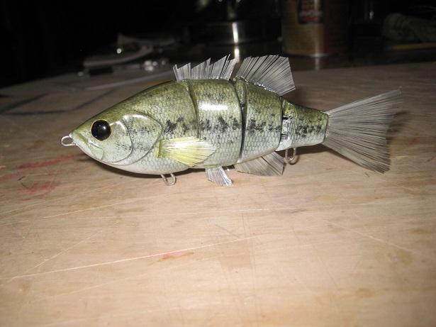 juvenile bass