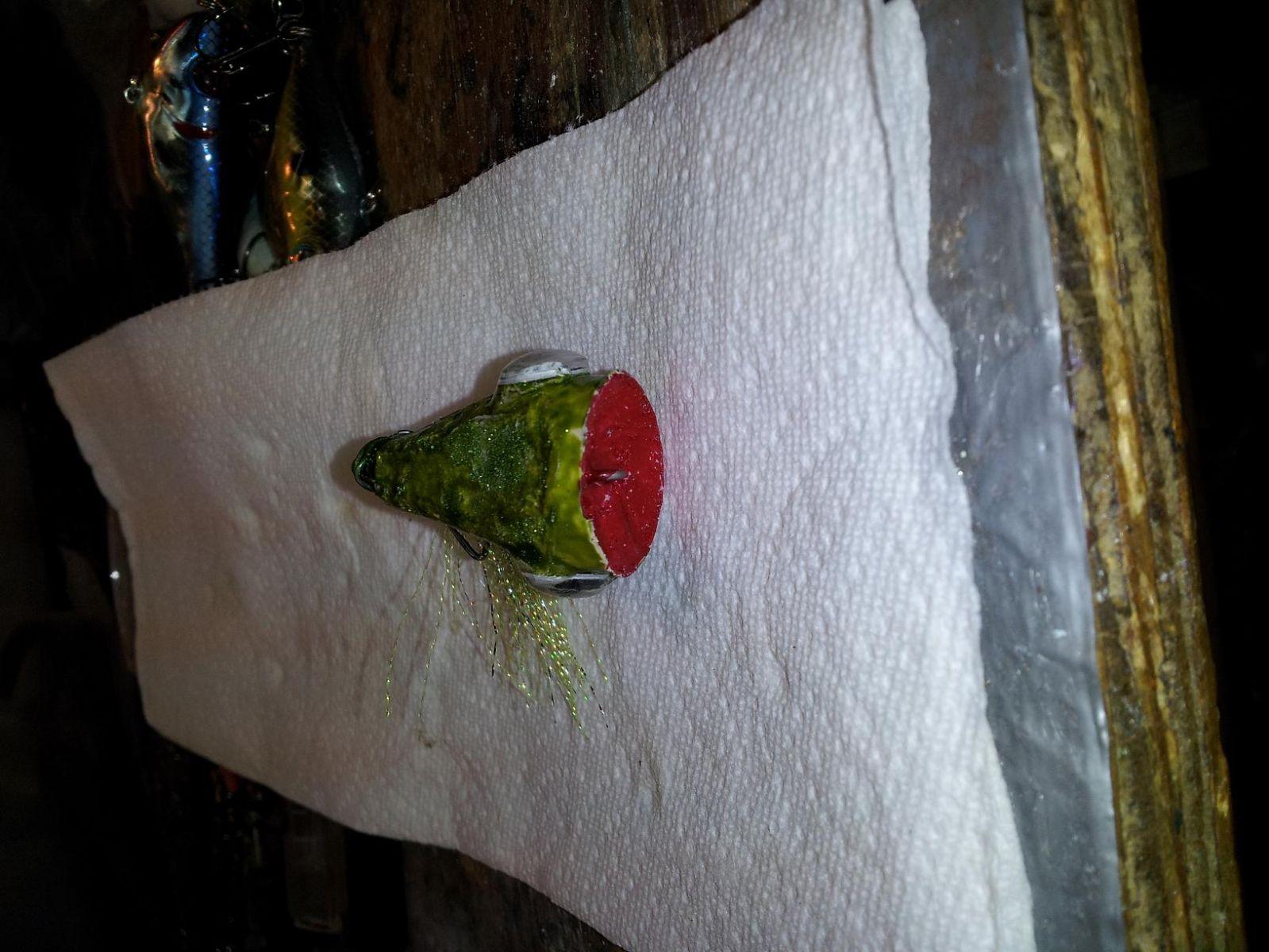 cork frog2 8 4 13