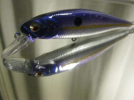 chrome royal shad