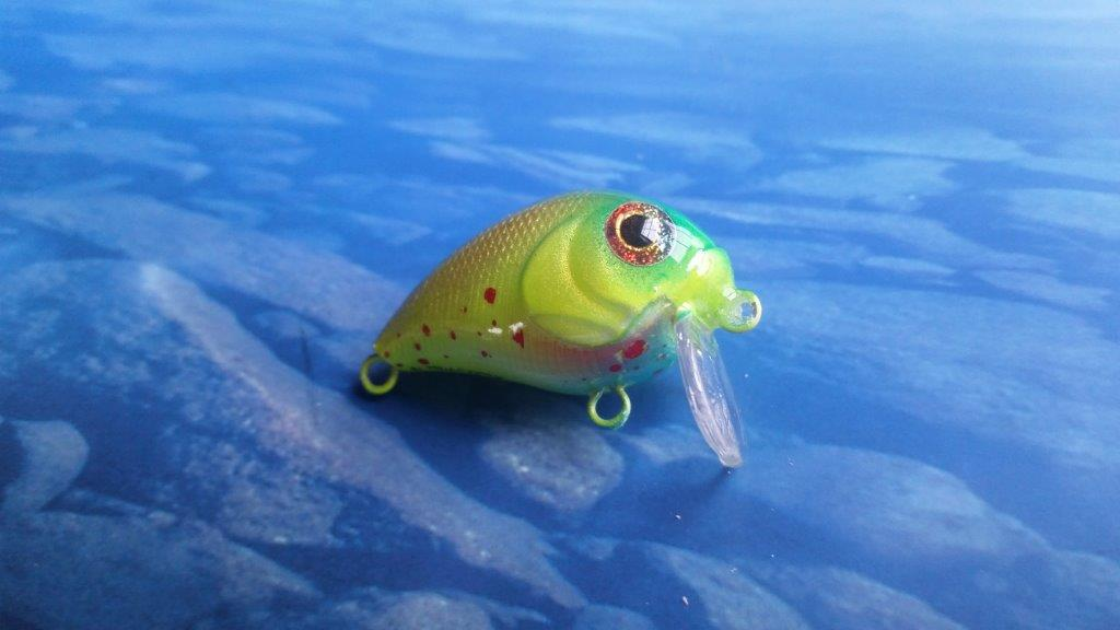 micro bait