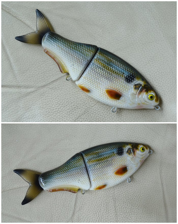 threadfin shad pattern