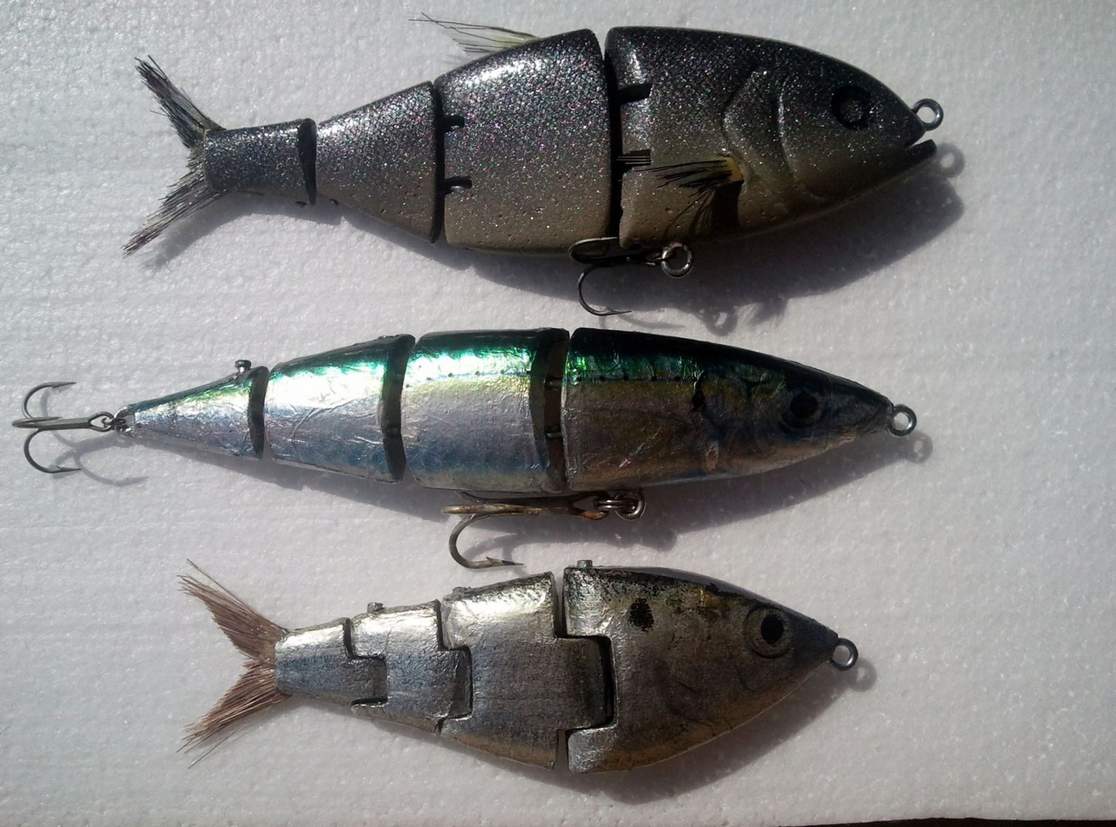Hardtail, Cigar minnow, Threadfin shad