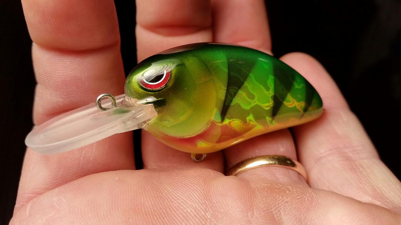 LJ MD KO Holographic Perch