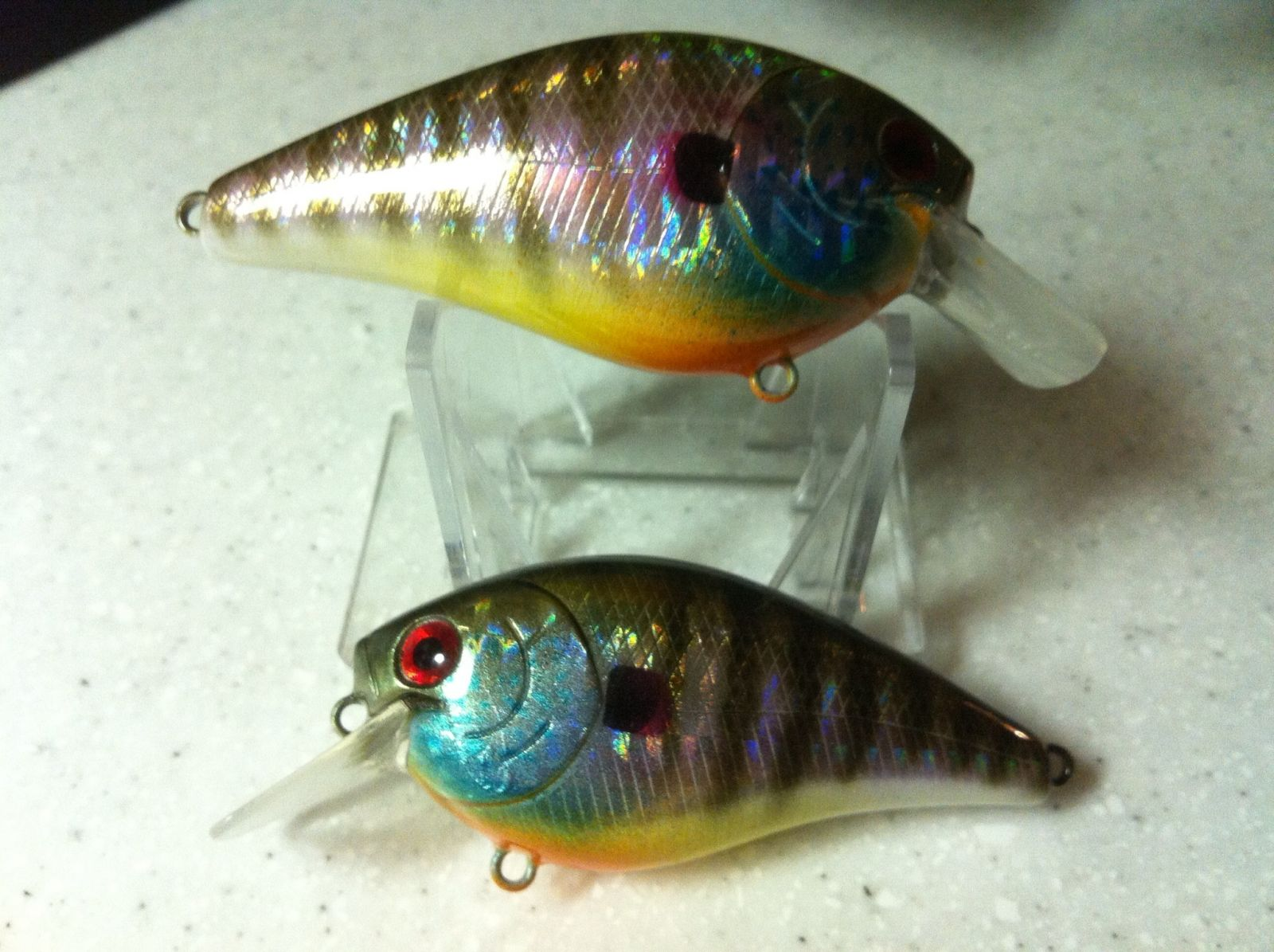Holographic Bluegill