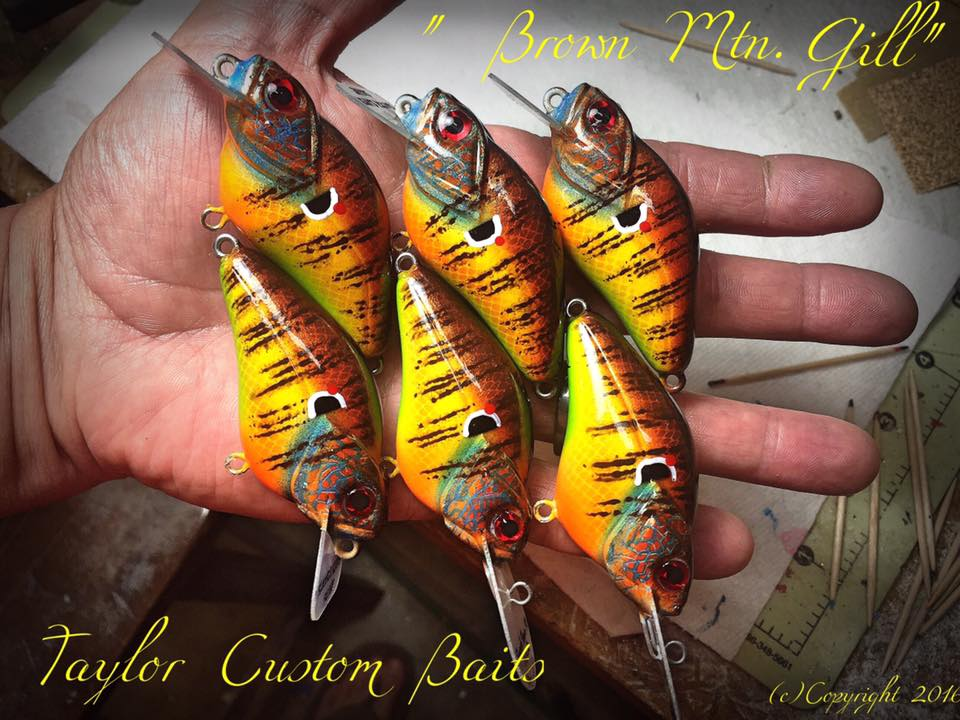 """Brown Mountain Gill"" color"