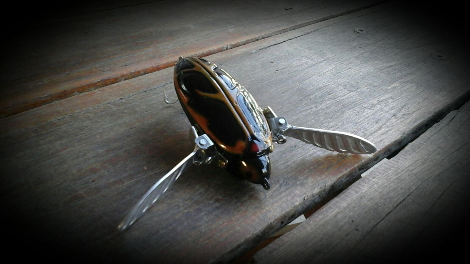 SURFACE BUG