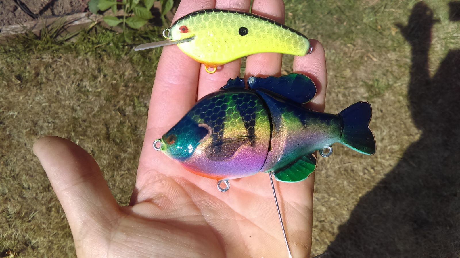 Bluegill perch
