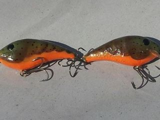 green craw wrinkled AC1315