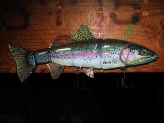 "Rainbow Trout 10"""