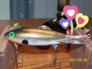 004 Tennesse shad